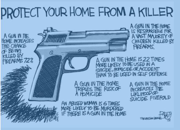 Gun in home