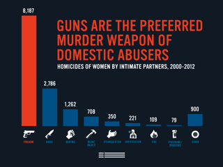 Image result for Domestic violence gun safety legislation