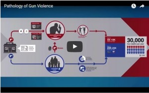 The Pathology of Gun Violence